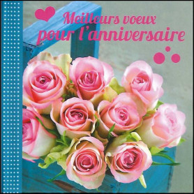 Meilleurs vœux pour l'anniversaire - Mini livre – Evangile pour Tous