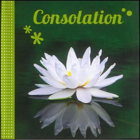 Consolation - Mini livre – Evangile pour Tous