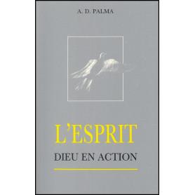 L'Esprit Dieu en action – A.D.Palma – Editions Viens et Vois