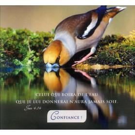 Carte double Confiance! - Jean 4.14