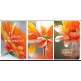 Carte simple Panoramique Anniversaire - Psaume 59.18. Trio de fleurs orange
