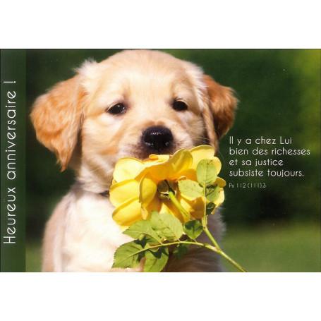 Carte Simple Anniversaire Chien Et Fleur Psaume 112 111 3