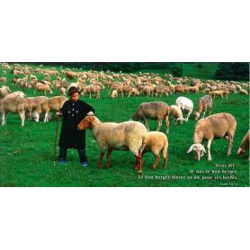 Carte simple Panoramique Je suis le bon berger - Jean 10.11
