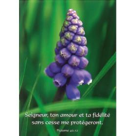 Carte simple Seigneur ton amour et ta fidélité - Ps 40.12