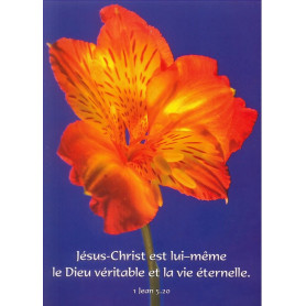 Carte simple Jésus-Christ est lui-même le Dieu véritable - 1 Jn 5.20