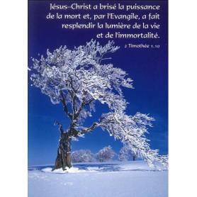 Carte simple Jésus-Christ a brisé la puissance de la mort - 2 Tim 1.10