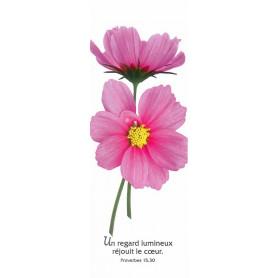 Signet Un regard lumineux réjouit - Prv 15.30
