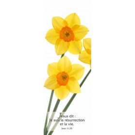 Signet Je suis la résurrection et la vie - Jn 11.25