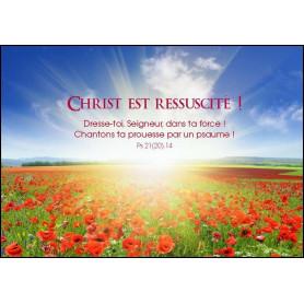 Carte simple Christ est ressuscité - Psaume 21(20).14