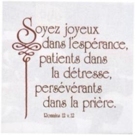Céramique Soyeux joyeux – Rom 12.12 - 20x20 cm - 73727