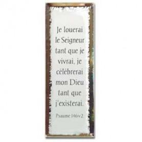 Tableau Miroir Je louerai le Seigneur - 5x14 cm - 76129