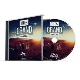 CD tu es grand Louange Live – La ZAP
