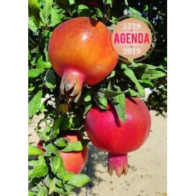 Agenda Judéo-Chrétien 5779 – 2019 – Editions Emeth