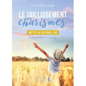 Le jaillissement des charismes - Frère Marie-Angel Carré