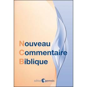Nouveau commentaire biblique