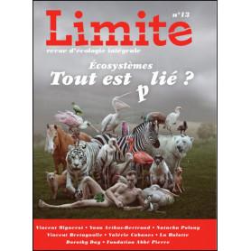 Revue Limite n° 13 - Tout est plié
