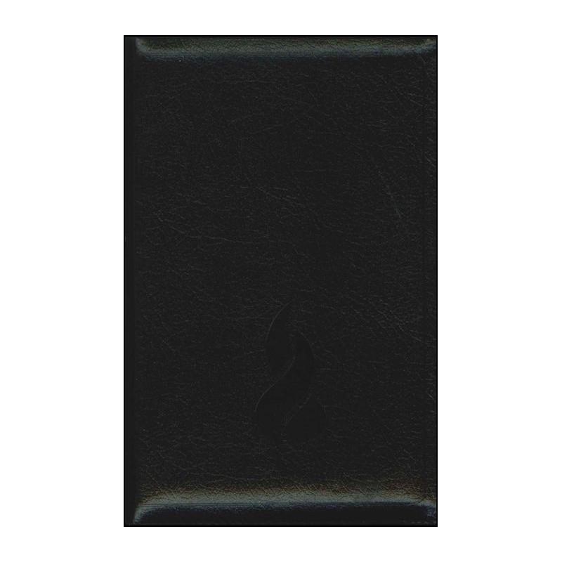 Bible NEG compacte souple fibrocuir noir f.éclair tr.or onglets