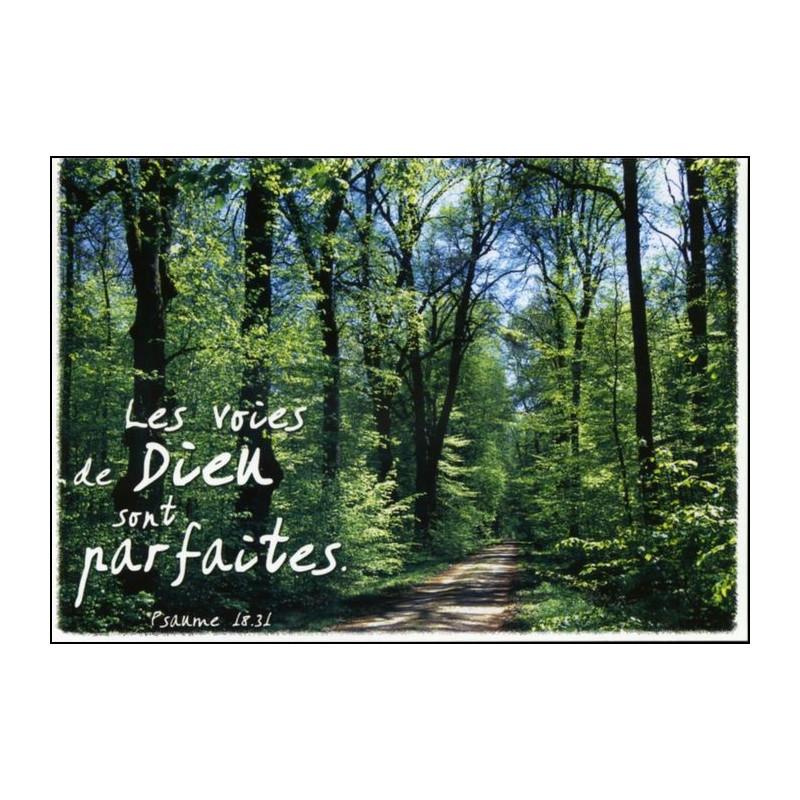 Carte simple Psaume 18 : 31