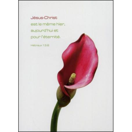 Carte simple Hébreux 13 : 8