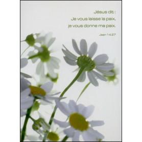 Carte simple Jean 14 : 27