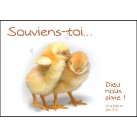 Carte simple Souviens-toi Jean 3 : 16