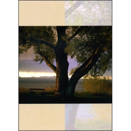 Carte double Condoléances feuillet Psaume 46 : 2