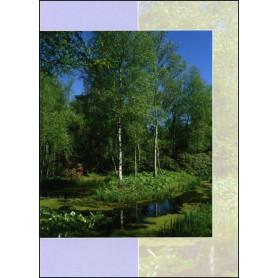 Carte double condol ances psaume 73 26 la centrale biblique - Verset biblique consolation ...