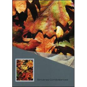 Carte double condol ances feuillet jean 6 68 la centrale biblique - Verset biblique consolation ...