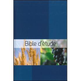 Bible Semeur d'étude rigide quadri bleu illustré