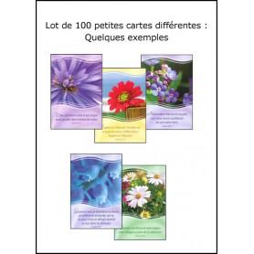 Lot de 100 petites cartes assorties fond fleurs