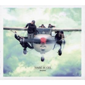 CD Tombé du ciel - Antydot